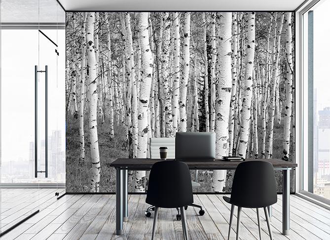 custom printed wallpaper with birch tree landscape scene